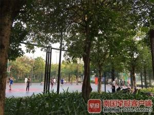 南宁邕江边免费球场为何突然收费?相关单位回应