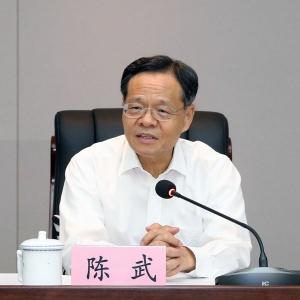陳武考察西部陸海新通道建設