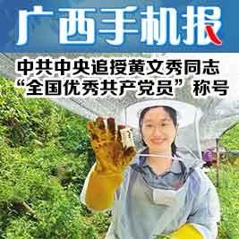 广西手机报10月11日上午版