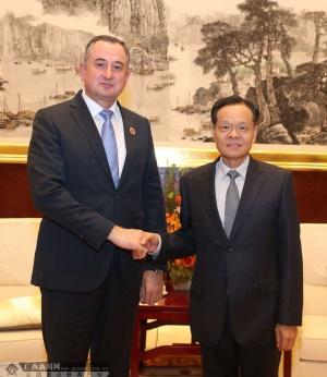 陈武会见塔吉克斯坦第一副总理赛义德