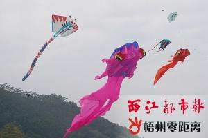 第七届梧州风筝邀请赛在梧州体训基地盛大举行