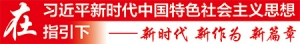 高山种菜闯富路——记融水苗族自治县和平村支书赵继锋
