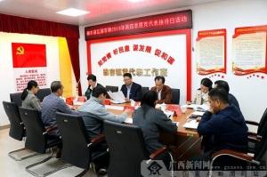 柳东新区:开展党代表接待日活动 倾听党群心声