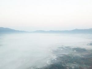 冬日晨雾美如画