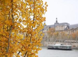 巴黎深秋时