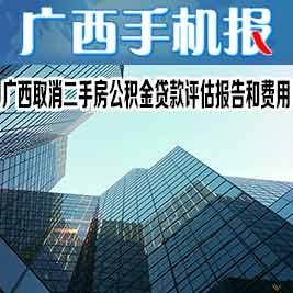 廣西手機報12月10日下午版