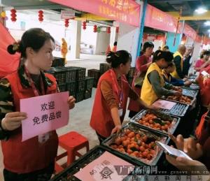 广西百色乐业县百坭村砂糖橘在邕举行爱心义卖