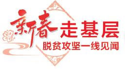 [新春走基层·脱贫攻坚一线见闻]白领返乡创业记