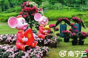 南寧市推出一系列文化旅游活動歡度春節(圖)