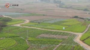 横县:养殖+种植多产业模式助力脱贫攻坚
