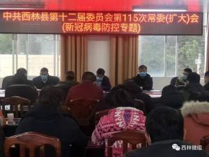 """党群连心 共同战""""疫""""——西林县基层党组织带领广大党员干部坚决打赢疫情防控阻击战"""