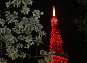 """东京塔点亮""""中国红""""为中国抗击疫情加油"""