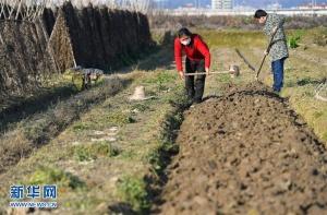江西:春耕春种农事忙