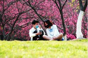 南宁公园温馨提醒:春色美景依旧,戴好口罩再游园