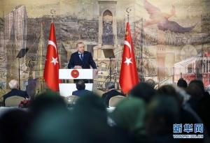 土耳其总统呼吁俄罗斯停止支持叙利亚政府军