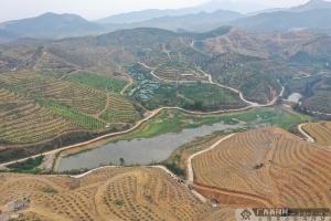 """临桂:农机具在春耕生产中大显""""身手"""""""