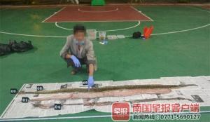 3月5日焦点图:男子宰杀5公斤重蟒蛇被判刑