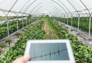 【地评线】齐鲁网评:瞄准智慧新农具,推动农业高质高效发展