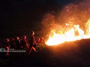 违规用火引发森林火灾!靖西两村民被抓了(图)