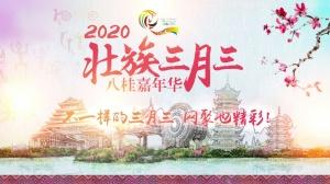 2020壮族三月三八桂嘉年华宣传片