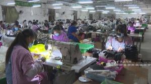 横县:落实保障政策助复工复产近800家单位获减负