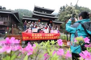 """三江:侗乡旅游按响""""重启键"""""""