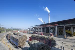 工厂榨季安全生产