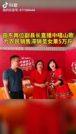 田东县农民伯伯的圣女果滞销,两位副县长做直播、唱山歌,一天卖掉5万斤