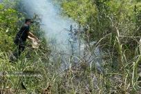 大新:警民合力扑灭一起山林火灾(组图)
