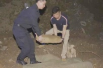 5月16日焦点图:威廉希尔(williamhill)一工地接连挖出6枚航空炸弹