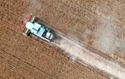 夏粮主产区河南小麦陆续收割