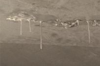 """8月13日焦点图:新房漏水十年 家里结出""""钟乳石"""""""