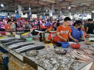 開海后一周的防城港 每公斤花蝦180元、花蟹70元