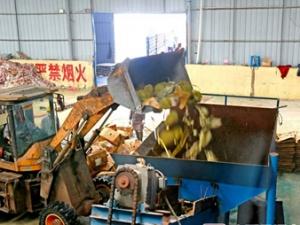 東興海關銷毀31.65噸走私榴蓮