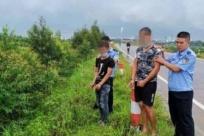 """9月24日焦点图:两男子用""""迷药""""偷狗获利50余万"""