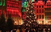 疫情下比利时首都点亮圣诞树