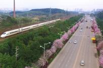 又一重要鐵路工程開工 廣西一個市將迎交通新格局