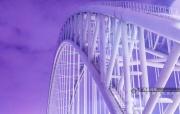 高清:細微處的驚艷 換個角度看邕江之上的橋梁