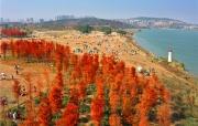 2021年1月4日焦點圖:廣西元旦假期旅游成績單出爐