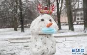 柏林:新年初雪
