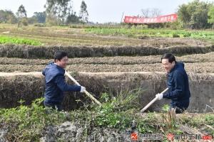 玉林市四家班子领导参加义务植树兴修农田水利活动