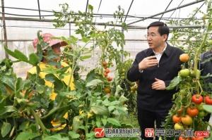 黄海昆:抢抓农时春耕春种 全力保障粮食安全