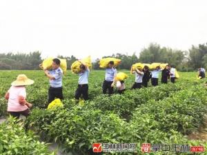 民警走进田间地头 帮农户抢摘辣椒