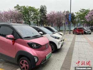 广西柳州一季度汽车产值增六成 新能源汽车消费翻三倍