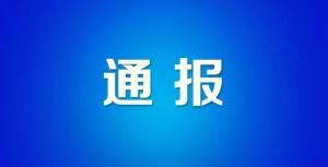 """北海市人民政府原党组成员、副市长陈勋被""""双开"""""""
