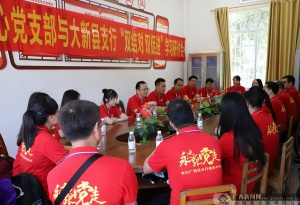 农行大新县支行:三级联动学党史 砥砺前行开新局