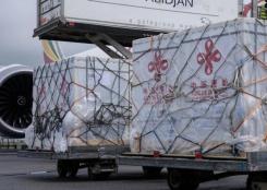 中国援助科特迪瓦新冠疫苗运抵阿比让
