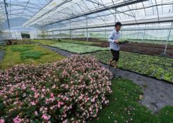 新農人助力鄉村振興