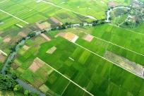 羅城:稻田村莊相映成趣 繪就美麗田園畫卷