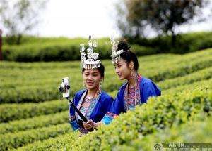 广西电信千兆宽带用户突破100万户 在全国名列前茅
